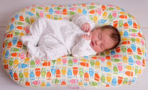 Poddle Pod baby cushion